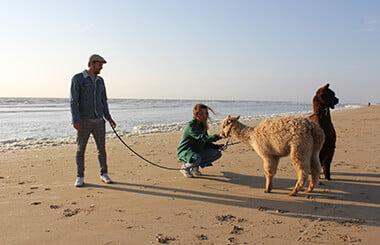 Alpaca-groepsuitjes-2